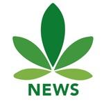 Cannabis News Network