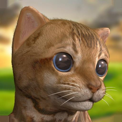 My Cute Little Kitten:Pet Game