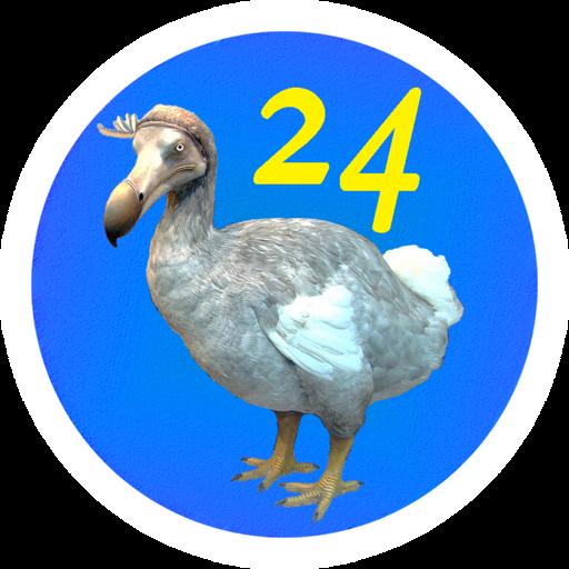 ДоДо 24