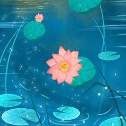 Lotus And Lotus Leaf