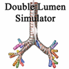 Crystal Clear Solutions - Double Lumen アートワーク