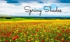 Spring Shades