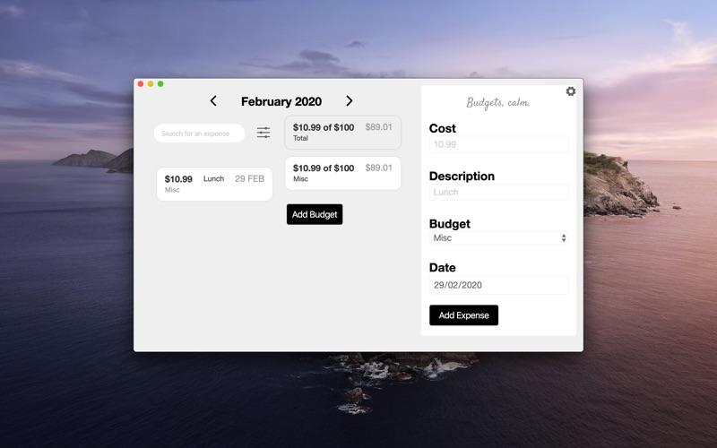Budget Zen. скриншот программы 1