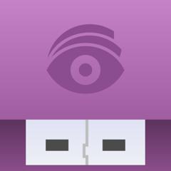 USB Disk