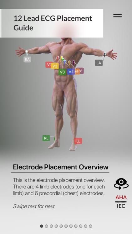 3D ECG Leads