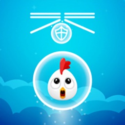 Protect - Chicken Egg