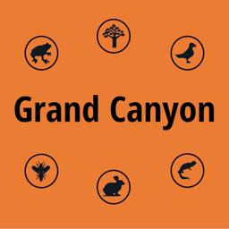 Ícone do app Grand Canyon NP Field Guide