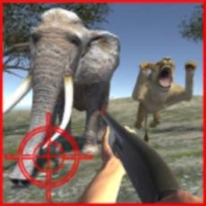 Activities of Africa Safari Hunting Patrol