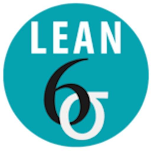 Lean Six Sigma Companion