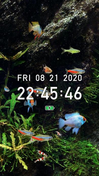Tropical Fish Tank - Mini Aqua free Resources hack