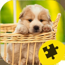Activities of Cute Dogs Puppy Jigsaw Puzzle