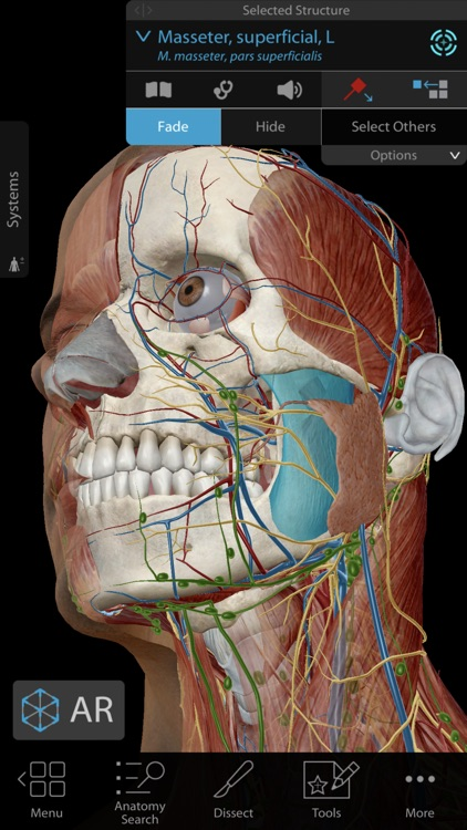 Human Anatomy Atlas 2019