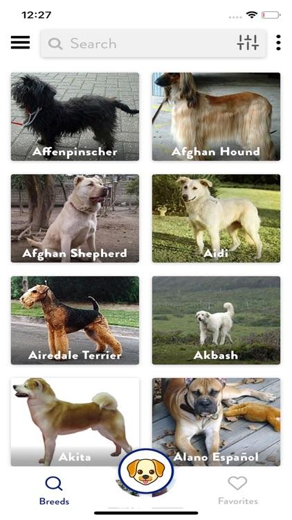 Dogs Pedia: Breed identifier