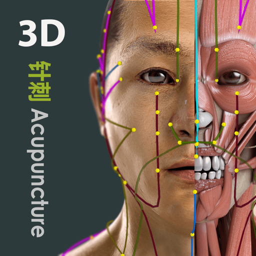 Visual Acupuncture 3D For Mac