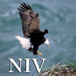 Psalm Daily Quotes NIV