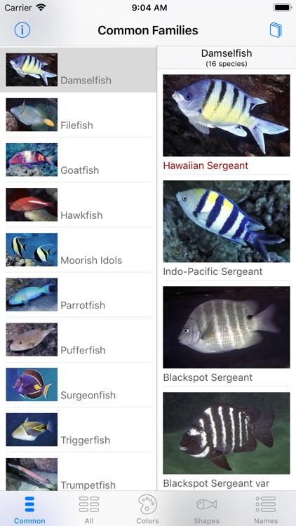 Scuba Fish Hawaii screenshot-7
