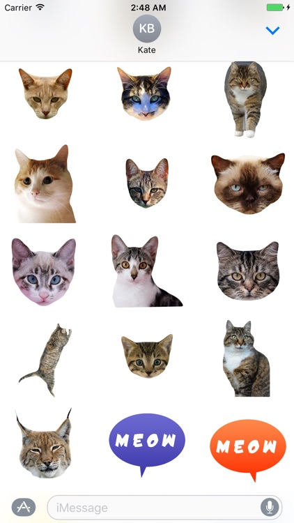 Cat Stickers for Messages screenshot-3