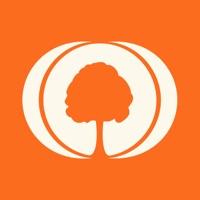 MyHeritage - Family tree apk