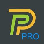 P1 monitor pro 2020
