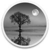 Reflect Studio - BrainFeverMedia