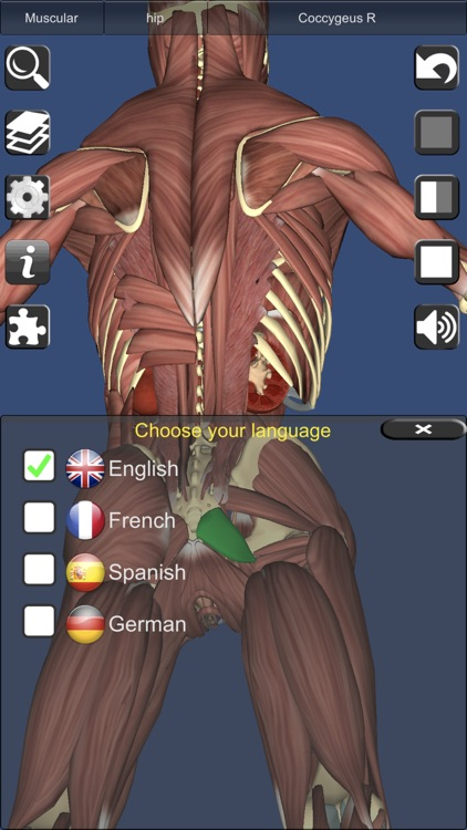 3D Anatomy screenshot-6