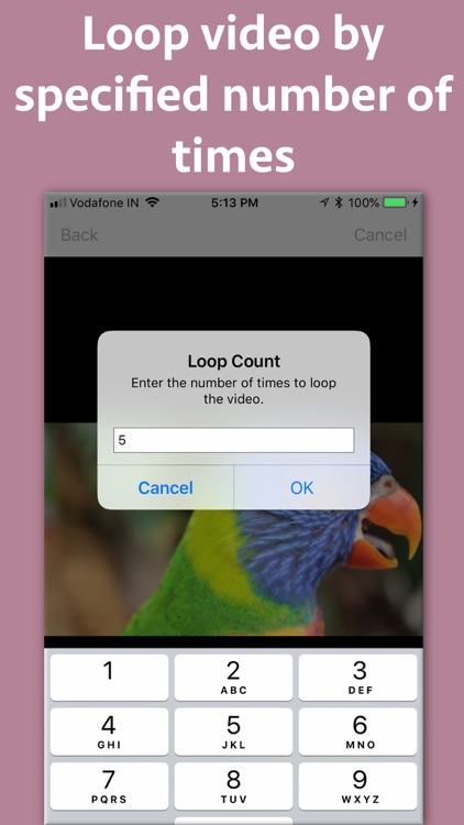 Video Looper Pro screenshot-3