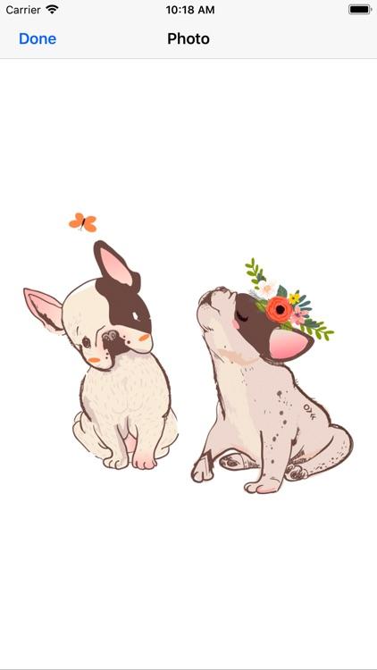 Pug French bulldog & Dachshund