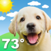 121.Weather Puppy: Forecast + Dogs