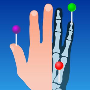 IMAIOS e-Anatomy ios app
