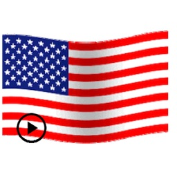 Animated Flags Of 50 US States