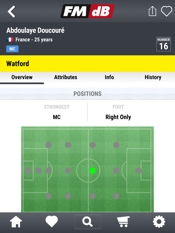 FMdB Football Scout screenshot 17