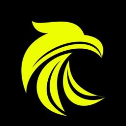 B-Falcon