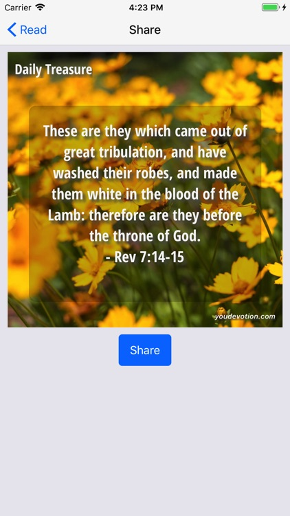 Treasures from God's Word screenshot-3