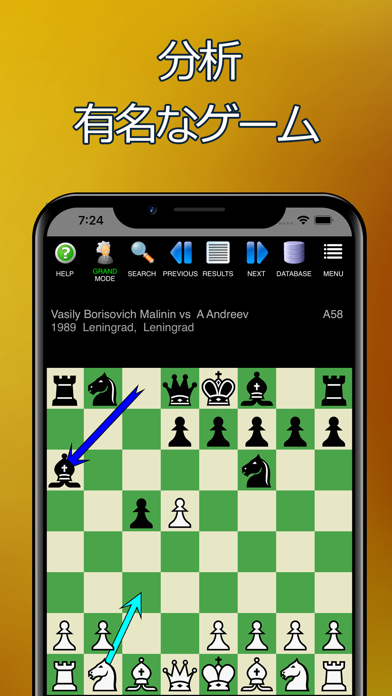 チェスーコーチ付き。 学び、遊ぶ。 ScreenShot7