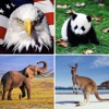 Guess The Animal:Quiz Game