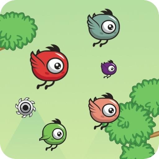 Birds Escape-Fly in circles