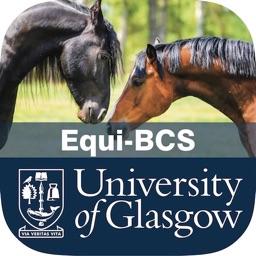 Equine Body Condition Scoring
