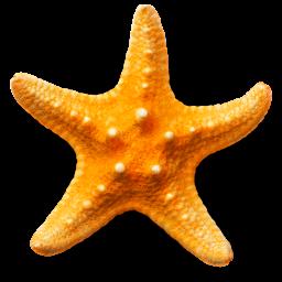Ícone do app Sandy Beach 3D