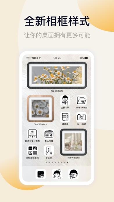 万能小组件 · Top Widgets 用于PC