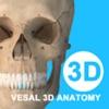 维萨里3D解剖教学