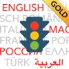 theorie24 GmbH - Führerschein multilingual GOLD Grafik