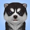 犬シミュレータ Dog Simulator