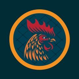 Chicken Shack Fast