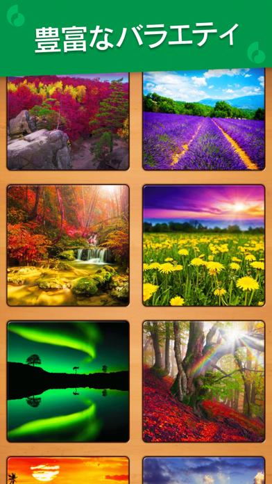 Jigsaw Puzzle: カラーアートジグソーパズル ScreenShot5