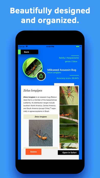 Insect Identification screenshot 5