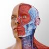 Complete Anatomy '22 - iPhoneアプリ