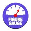 Figure Gaugeアイコン