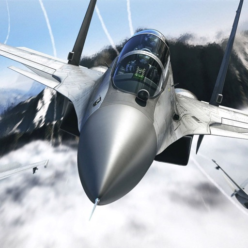Airfighters Combat Flight