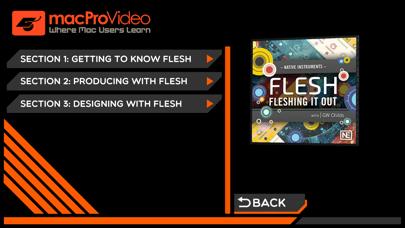 Fleshing It Out : Flesh 101 screenshot two