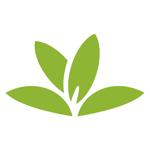 PlantNet на пк